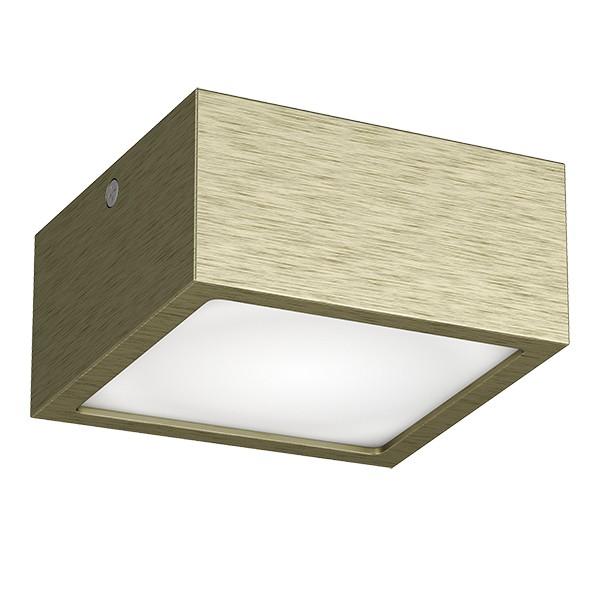 Светильник Lightstar LIGHTSTAR-213921
