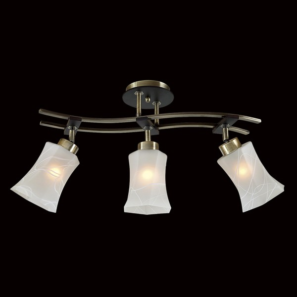 Светильник Citilux CITILUX-CL142133
