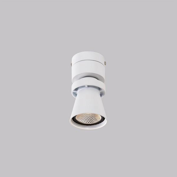 Светильник Citilux CITILUX-CL556510