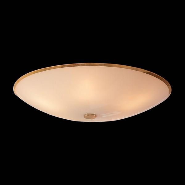 Светильник Citilux CITILUX-CL911602