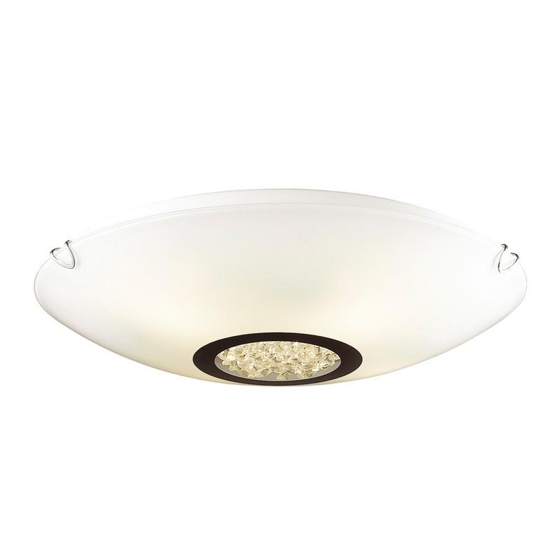 Фото светильника Favourite 1694-3C