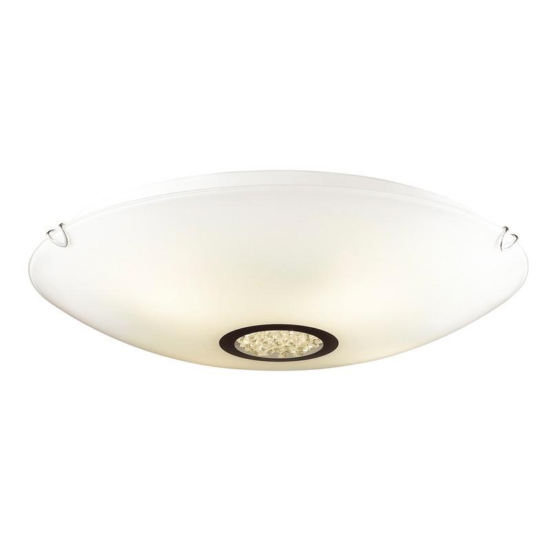 Фото светильника Favourite 1694-4C
