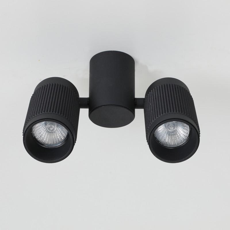 Светильник Favourite Favourite-2452-2U