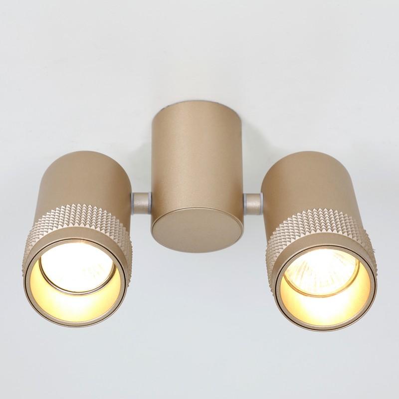 Светильник Favourite Favourite-2455-2U