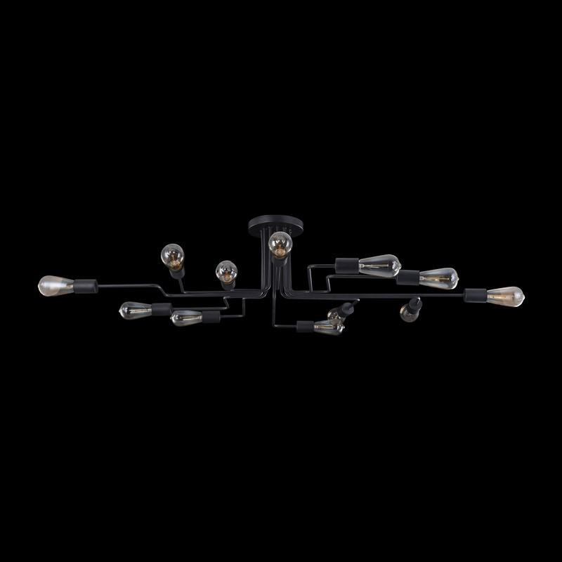 Светильник Maytoni MAYTONI-T532CL-12B